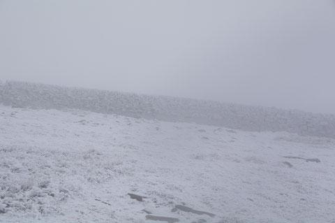 アイルランド・雪