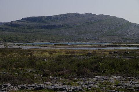 アイルランド バレン高原