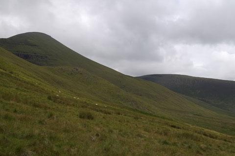 アイルランド・田舎
