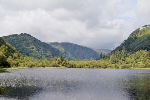 アイルランド - 湖 - 自然