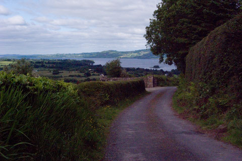 アイルランド 田舎道