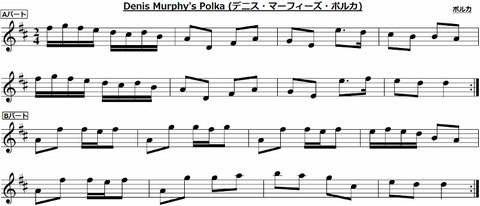 Denis Murphy's Polka デニス・マーフィーズ ポルカ アイルランド アイリッシュ