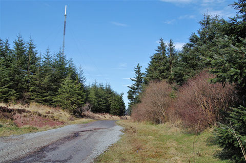 Maghera Mountain