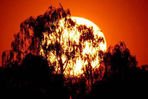 Sonnenuntergang in Plieningen, 06.06.2013