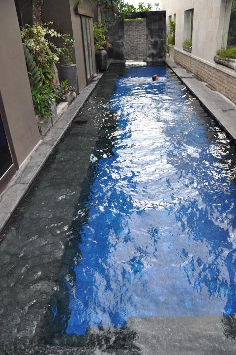 Nouchine kann schwimmen