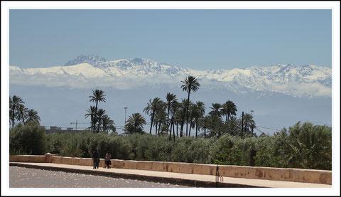 Le jardin de la Menara ( en fond les montagnes du Haut Atlas )