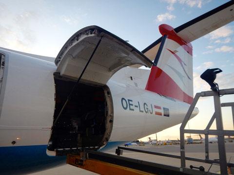 機体変更する前のプロペラ機の荷物室(スーツケースが山積み)