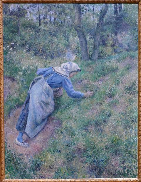 Camille Pissarro : paysanne ramassant de l'herbe, 1881