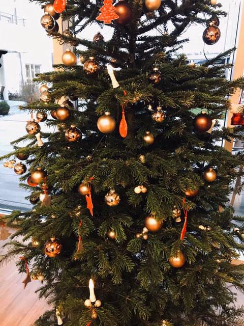 Der Weihnachtsbaum in der Seniorenresidenz in Egersdorf