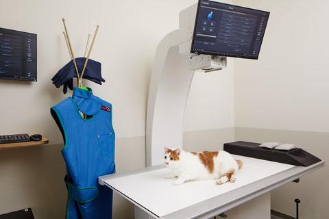 Röntgenzimmer Tierarztpraxis zur Schmiede