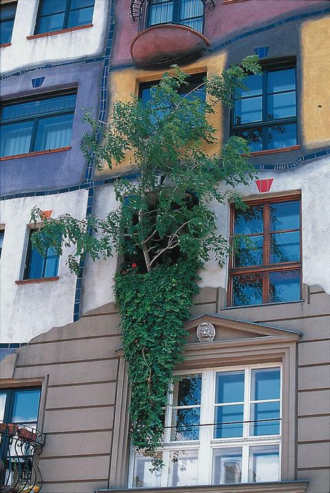 Дом Хундертвассера