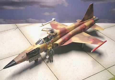 Außenlasten: eine Sidewinder und eine Signalabschussrakete für die Luftkampfübung