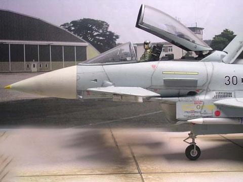 Canard-Flügel unterm dem Cockpitbereich.