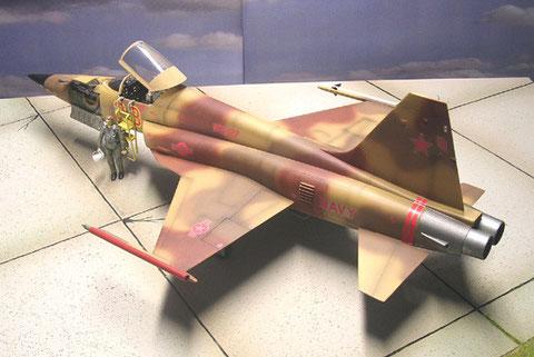 Ein Linden-Decals der Aggressor-Staffel kommt zur Verwendung