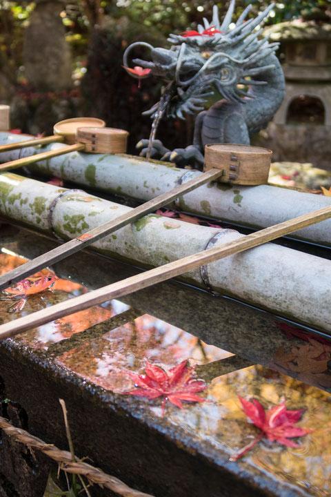 京都亀岡・鍬山神社の紅葉