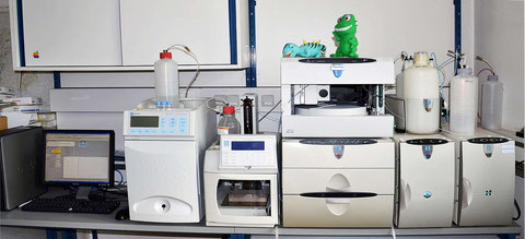 Dionex ion-chromatography system for the analysis of the extracted fluids.