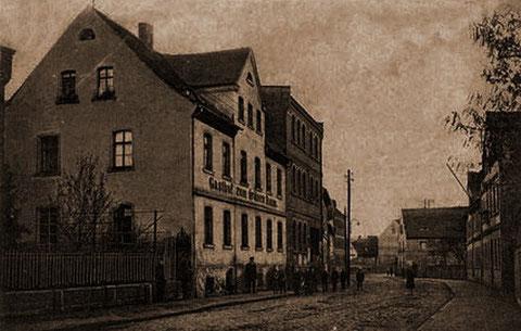 Grüner Baum - Historische Postkarte um 1900
