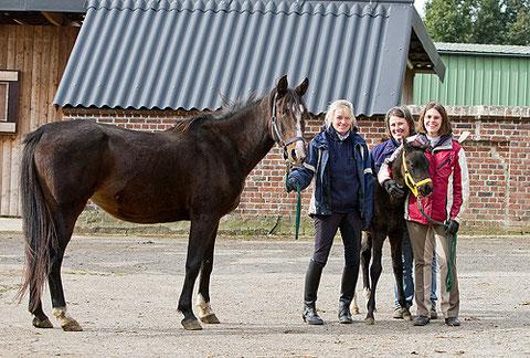 Shagya-Araber Zuchtstute BAIDA ShA mit Hengstfohlen SALADIN ShA, Züchterin,  und Helfern vom RFV Team Pferdefreunde e. V.  © 2011 NESSA Equestrian Design.