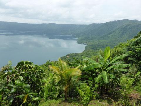 Die Laguna Apoya  ist ein Kratersee mitten im Dschungel. Das Wasser ist glasklar und hat mit etwa 28 Grad die Wassertemperatur, wie wir sie brauchen