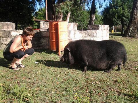 Tina hat im neuen Jahr schon wieder mächtig Schwein