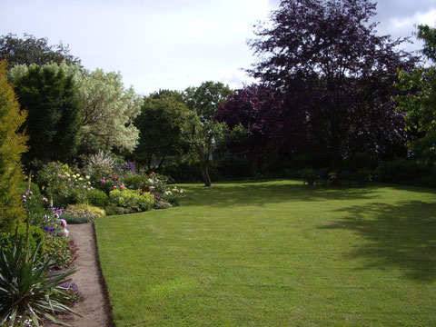 Unser Garten, der Auslauf der Hunde