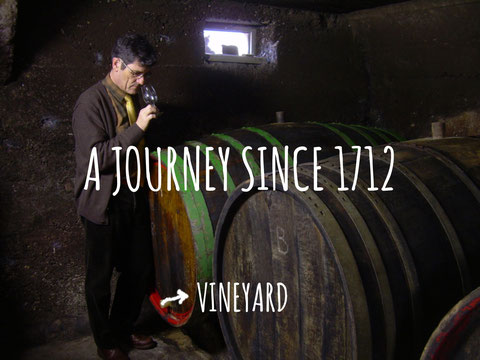 winemaker in the cellar