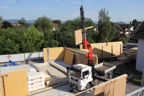 Aufstellung des Holzbaus