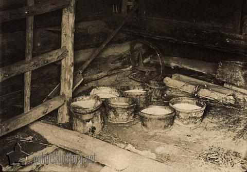 Хранение молока в подполье. И.В.Попов
