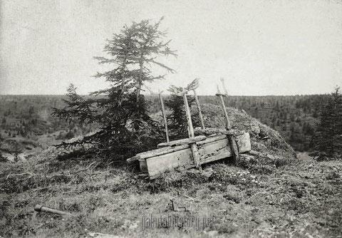 Араҥас, упавший со столбов. 1896 (Майнов И. И.)