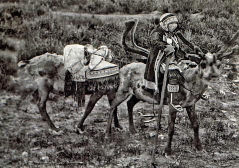 Эвенка с посохом верхом на олене с младенцем в люльке-бэбээ. Конец XIX в.