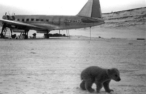 Полярная авиация СССР
