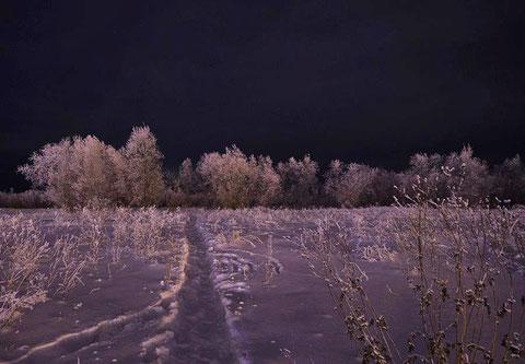 Якутия. Зимняя ночь. Фото Айар Варламов
