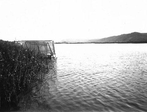 Река Лена. Якутия.