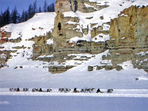 Гонки оленьих упряжек по льду реки Анабар. День оленевода. 2009 г.