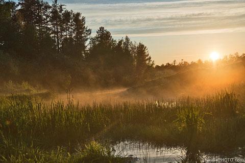 Якутия. Летнее утро. Фото Айар Варламов
