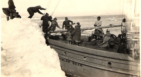 Уход экипажа со шхуны «Полярный медведь».