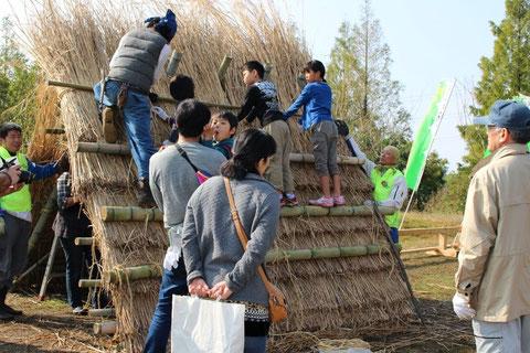 兵庫県森林ボランティア団体連絡協議会の萱葺き体験