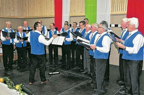 Männerchor 2013