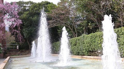 公園の噴水の写真フリー素材 Park Fountain Photos Free Material