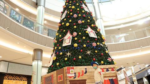 クリスマスツリーのフリー素材 Christmas tree free material