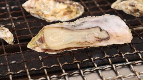網焼き牡蠣の写真フリー素材 Oyster photo free material