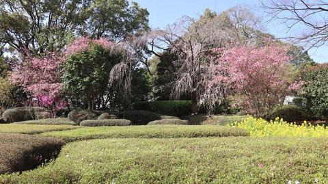 公園、庭園の写真フリー素材 Park, garden photo free material