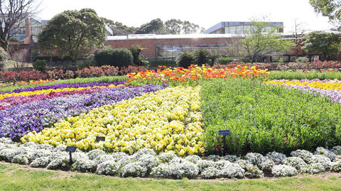 手入れされた庭園の写真フリー素材 Pictures of groomed gardens Free material