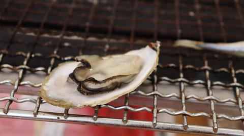 焼き牡蠣の写真フリー素材 Grilled oysters photo free material