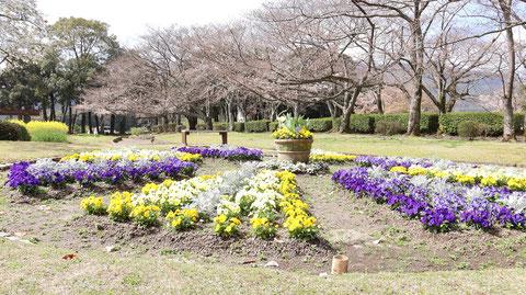 公園の庭園の写真フリー素材 Park Garden Photos Free Material