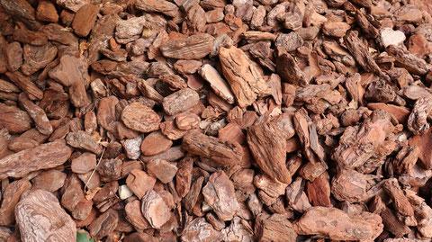 インテリアバークの写真フリー素材 Interior bark photo free material