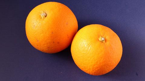 オレンジ、果物、フルーツ、ダイエット、お菓子、おやつ、料理、食べ物の写真フリー素材 Oranges, fruits, fruits, diets, sweets, snacks, food, food photos free material