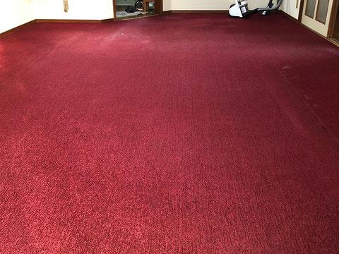 既存リビング絨毯(じゅうたん)