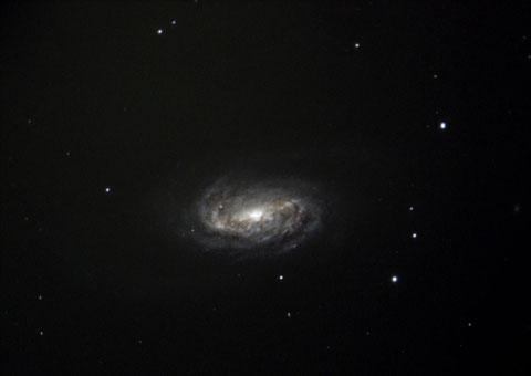 NGC2903 - für Charles und Pierre - Aufnahme der Sternwarte Flumenthal, 19.03.2014