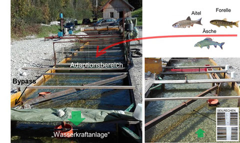 fig. 1: Experimental flume of BOKU Vienna in Lunz am See